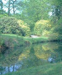 Schlosspark in Lütetsburg